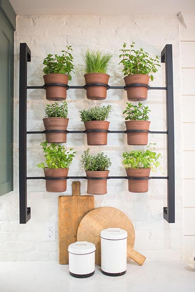 terracotta kitchen planters