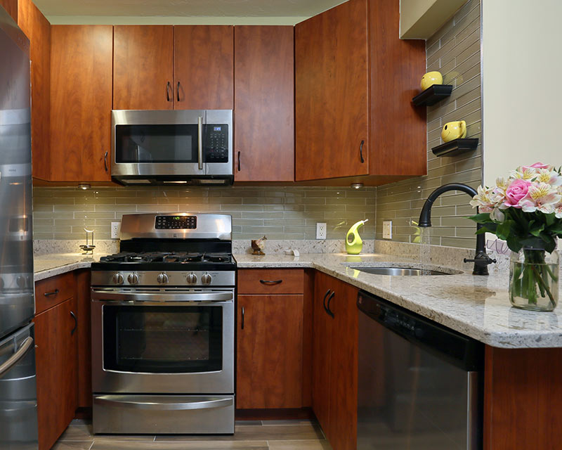 Plain Prestige Cabinets Make Dark Finishes Shine